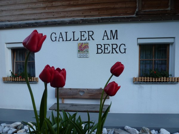 Foto esterno in estate Galler am Berg