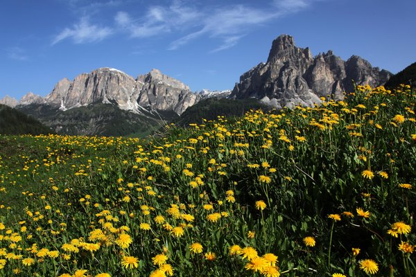 Sommer Präsentationsbild Tourismusbüro Corvara
