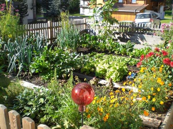 Foto vom Garten Winnebach