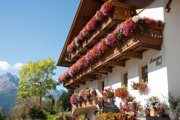 Foto estiva di presentazione Kinigerhof - Appartamenti 2 fiori