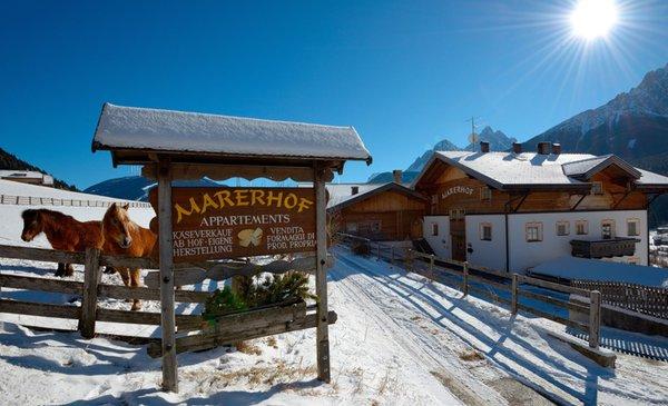 Foto invernale di presentazione Marerhof - Appartamenti in agriturismo 2 fiori