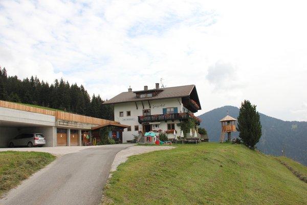 Foto estiva di presentazione Jörgerhof Gasthof - Pensione + Appartamenti 2 stelle