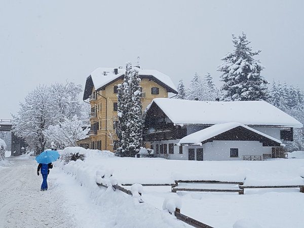 Photo exteriors in winter Holiday house Europa