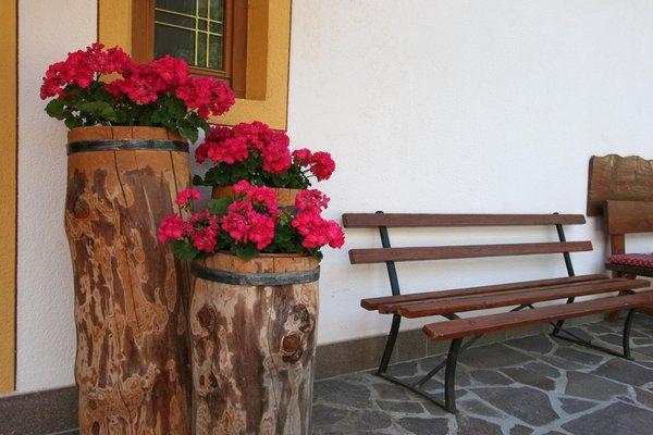 Photo of the garden San Silvestro / Wahlen (Dobbiaco / Toblach)