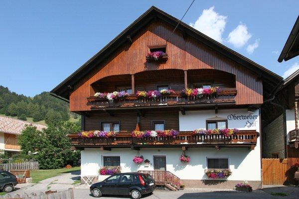 Summer presentation photo Rooms + Apartments Oberweberhof