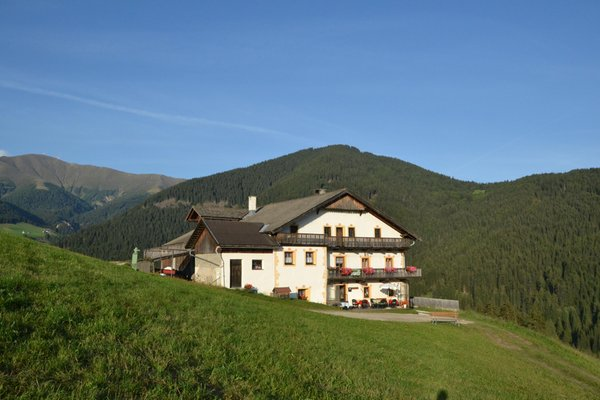 Foto esterno in estate Gostnerhof