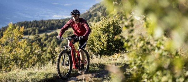 Foto estiva di presentazione Noleggio bici Da Carlo