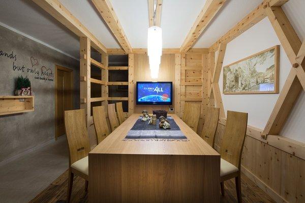 Foto dell'appartamento Alpin Apartments