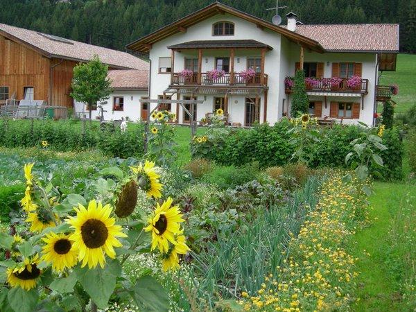 Photo exteriors in summer Stifterhof