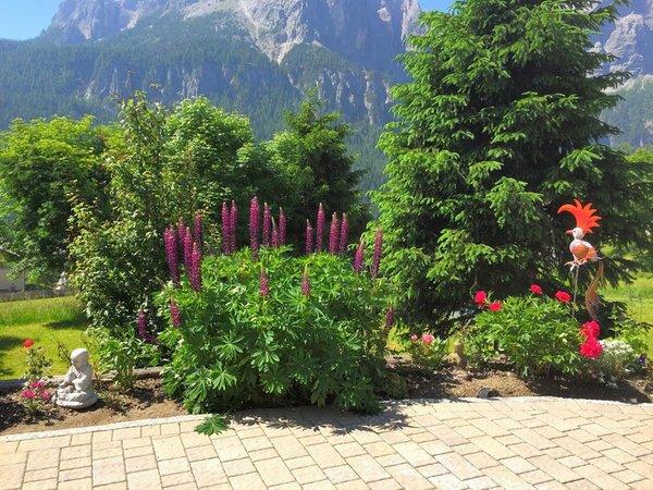 Foto vom Garten Colfosco