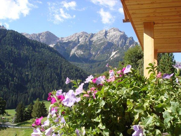 Photo exteriors in summer Bergheim
