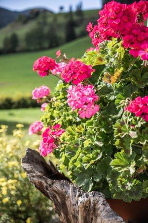 Foto del giardino Braies di Dentro