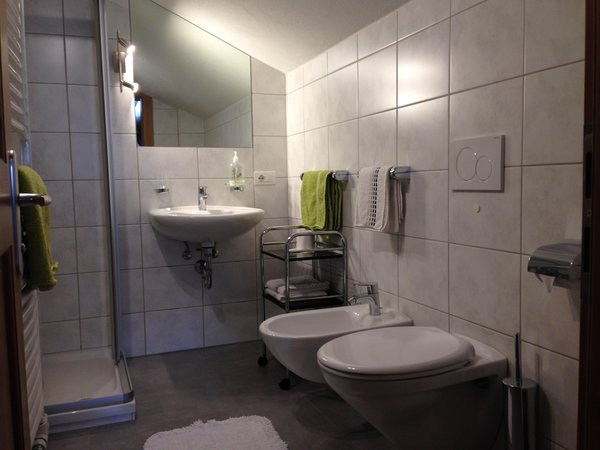Foto del bagno Camere private in agriturismo Stauderhof