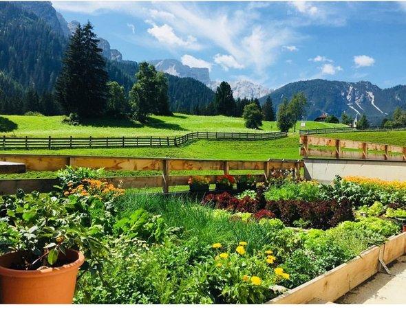 Photo of the garden Braies / Prags
