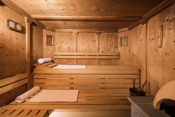 Foto der Sauna Moos