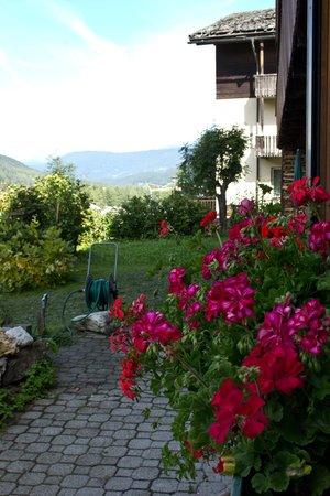 Photo of the garden Sesto / Sexten - Moso / Moos