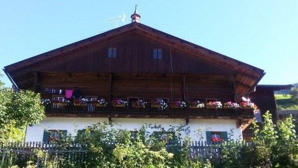 Foto Außenansicht im Sommer Innerrauthof