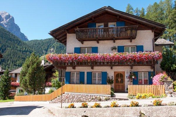Sommer Präsentationsbild Ferienwohnungen Haus Schmiedhofer