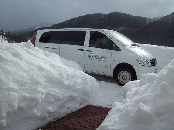Foto di presentazione Taxi Renato