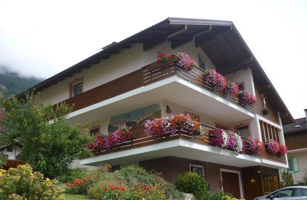 Foto estiva di presentazione Marino Vanzetta - Appartamenti