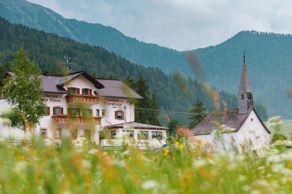 Foto estiva di presentazione Hotel Alpenrose