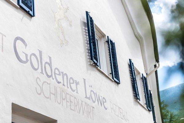 Logo Goldener Löwe - Anno 1773