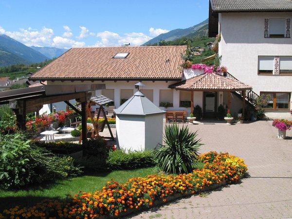 Photo of the garden Coldrano / Goldrain (Laces - Val Martello / Latsch - Martelltal)