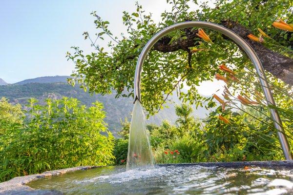 Foto del giardino Laces