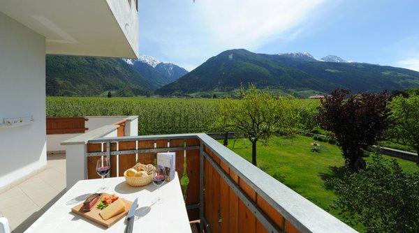 Foto vom Balkon Obstgarten