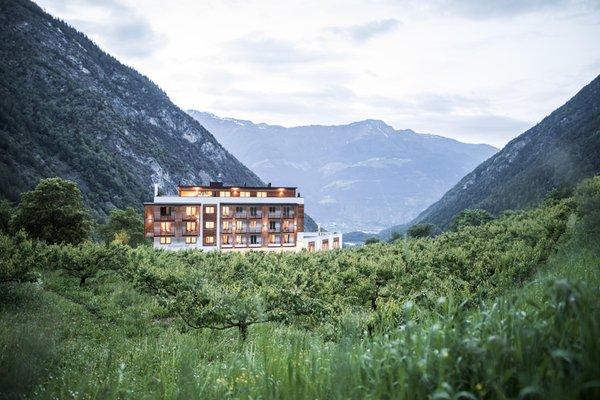 Foto estiva di presentazione Burgaunerhof - Hotel 3 stelle sup.