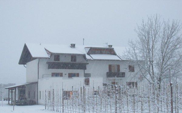 Foto esterno in inverno Wielander Sackgut