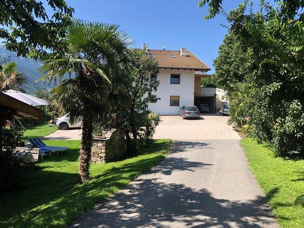 Foto esterno Appartamenti in agriturismo Pixnerhof