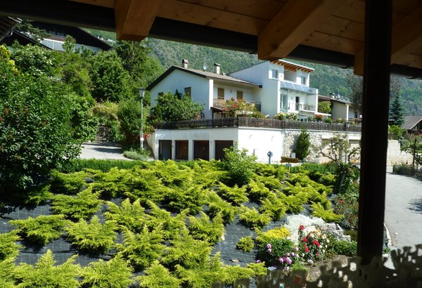 Foto vom Garten Kastelbell - Tschars