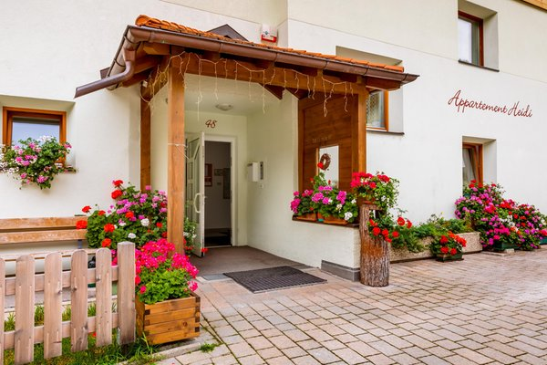 Foto esterno in estate Haus Heidi