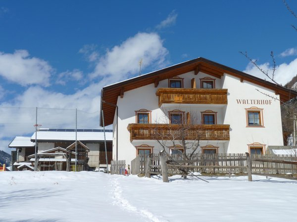 Foto invernale di presentazione Walterhof - Appartamenti in agriturismo 2 fiori