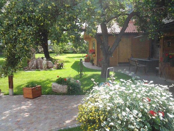 Foto del giardino Lasa