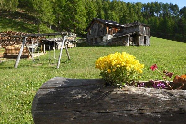 Foto del giardino Malles - Mazia