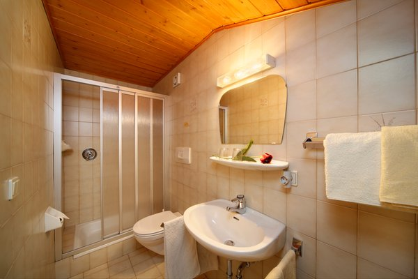 Foto del bagno Camere + Appartamenti in agriturismo Steinerhof