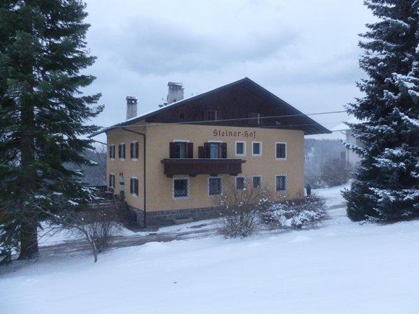 Foto invernale di presentazione B&B + Appartamenti in agriturismo Steinerhof