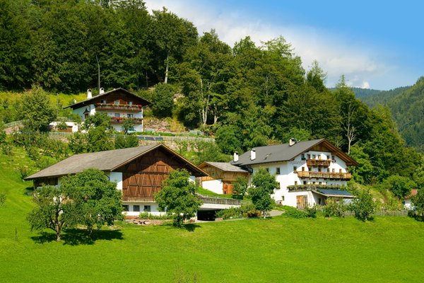 Foto esterno in estate Nusserhof