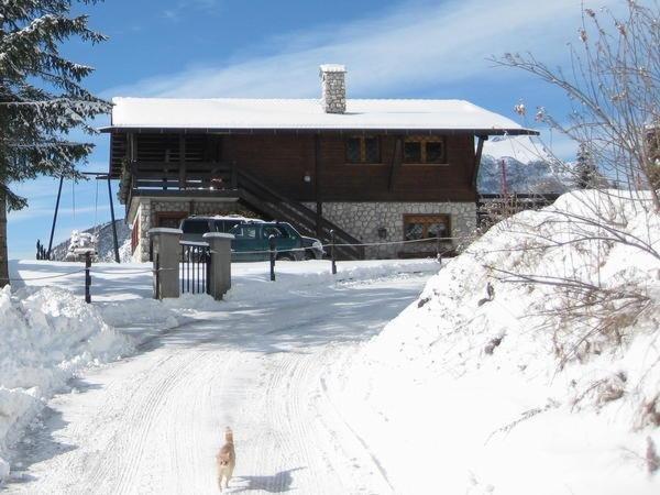 Foto invernale di presentazione Il Nido sul Civetta - Appartamenti