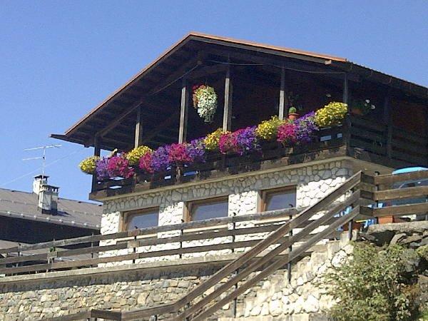 Sommer Präsentationsbild Ferienwohnungen Il Nido sul Civetta