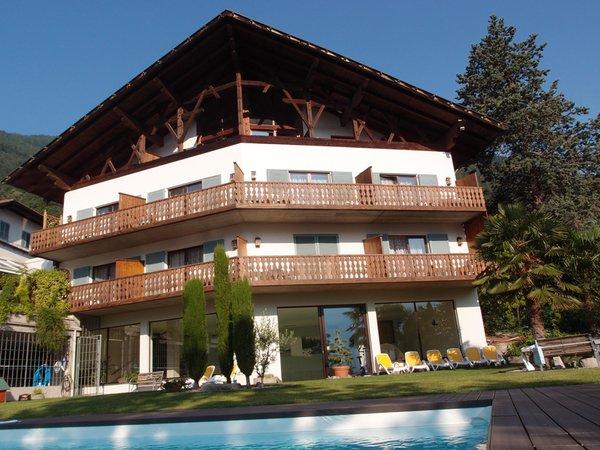 Foto estiva di presentazione Traubenwirt - Hotel 3 stelle sup.