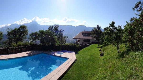 La piscina Greiterhof - Pensione + Appartamenti 2 stelle