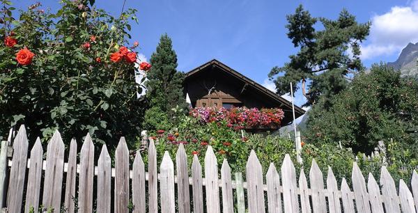 Foto esterno in estate Birkenhof