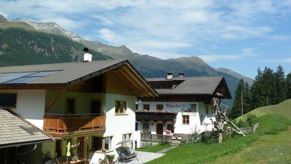 Foto estiva di presentazione Appartamenti in agriturismo Pfeiferhof