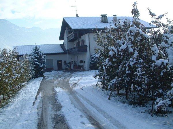 Foto invernale di presentazione Kreuzwegerhof - Appartamenti 3 soli
