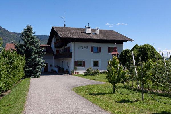 Foto estiva di presentazione Kreuzwegerhof - Appartamenti 3 soli