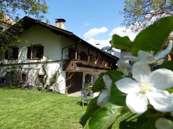 Ferienwohnungen auf dem Bauernhof Linserhof - Lana - Meran und Umgebung