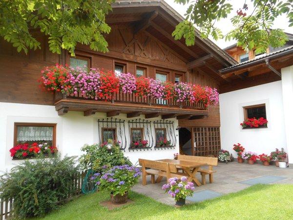 Foto esterno in estate Blumenresidence Karnutsch